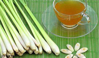 tazza tè citronella