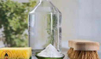 5 modi diversi di usare l'aceto come detergente a casa